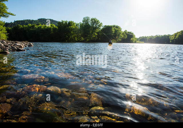 Gilead stock photos gilead stock images alamy for Maine fly fishing