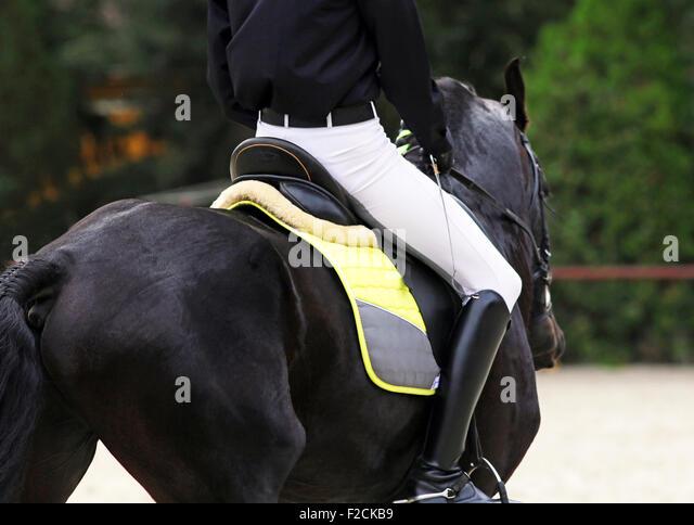 West indies black stallion shows off pakistani girl conquest - 3 5