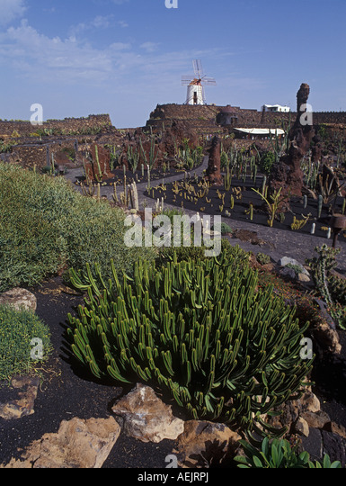 Cesar manrique stock photos cesar manrique stock images for Jardin de cactus lanzarote