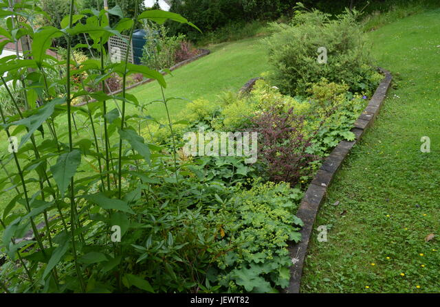 Garden railway sleepers stock photos garden railway - The well tended perennial garden ...