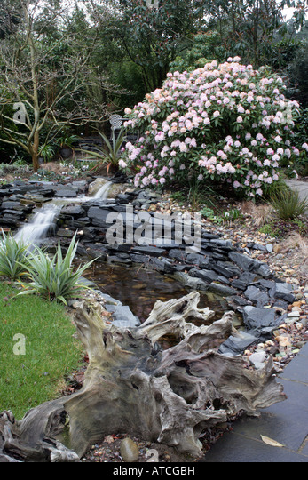 Landscaping With Driftwood : Retaining wall garden stock photos