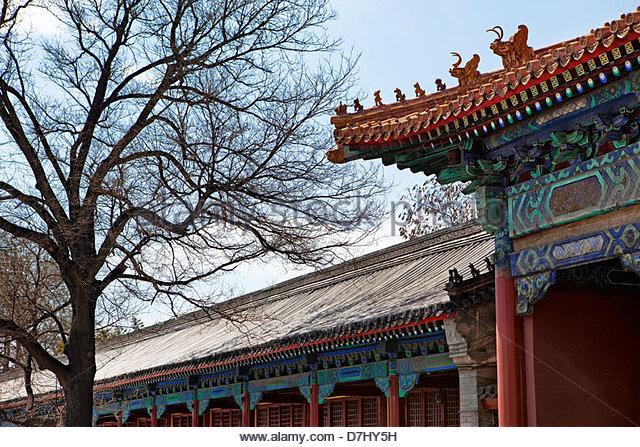 Pagoda style house