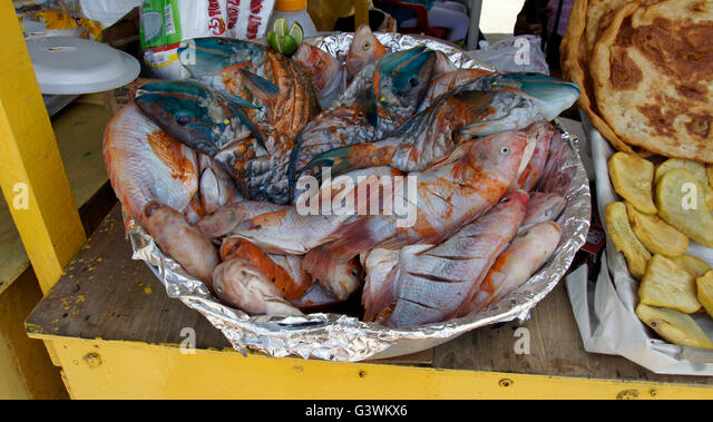 Fisherman caribbean stock photos fisherman caribbean for Fish market boca