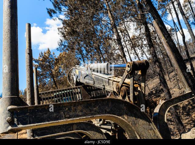 logging machine