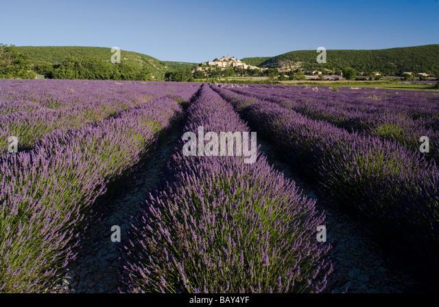 videos erotiques soft Alpes-de-Haute-Provence