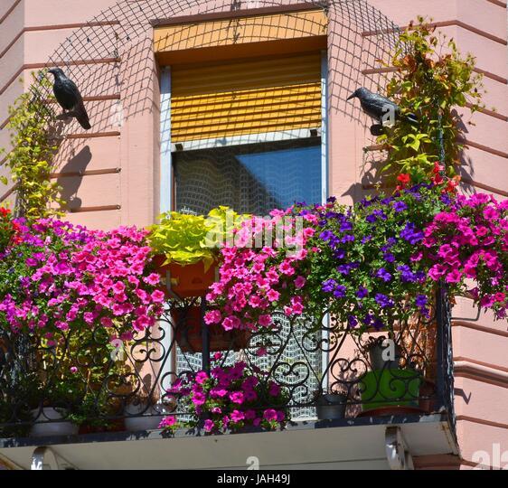 balkon blumenksten balkon holz b ware holz with balkon. Black Bedroom Furniture Sets. Home Design Ideas