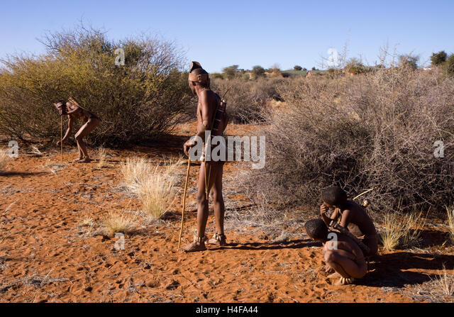 the san of the kalahari desert The extraordinary story of how the bushmen of the kalahari took their government to  madrid, milan, paris and san francisco a 501(c)(3) organization tax id 26.