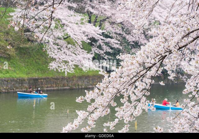 Kokyo Stock Photos & Kokyo Stock Images - Alamy