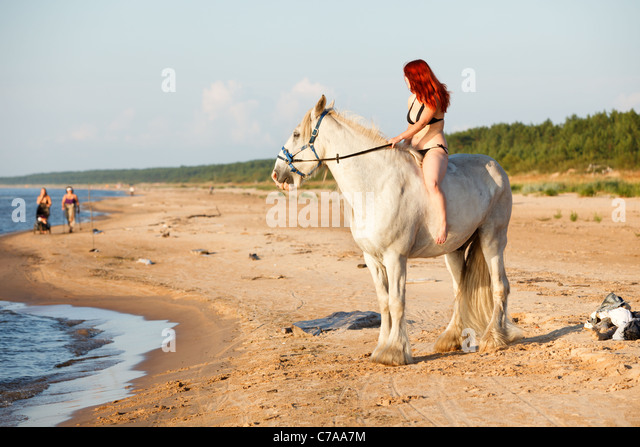 white horse beach buddhist single women Looking at the camera white lion in moon light horse herd  starfish and coral on the beach bear on white  single elephant walking in a road with the sun from.
