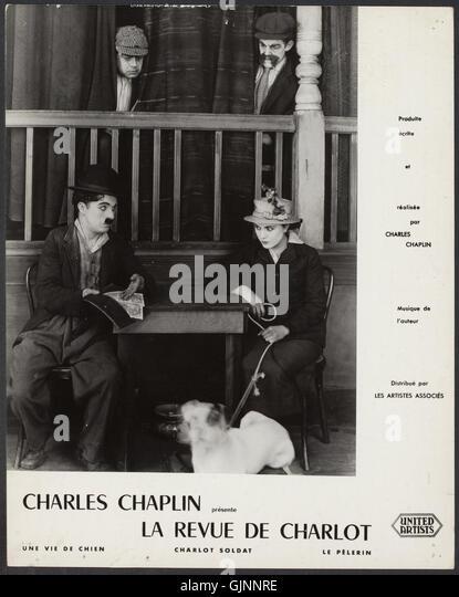 A Dog S Life Charlie Chaplin Full Movie