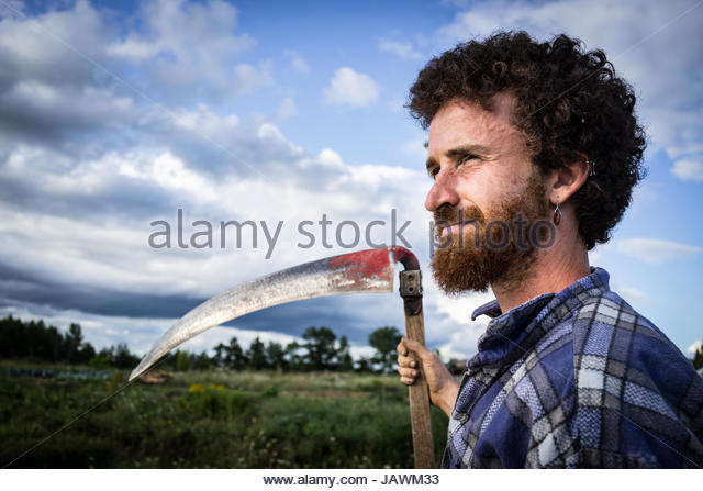 A rice paddy farmer surveys his land while holding a scythe for harvest. - Stock Image