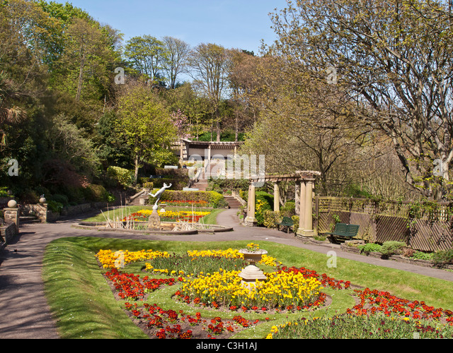 Remarkable Scarborough Gardens Uk Stock Photos  Scarborough Gardens Uk Stock  With Entrancing Spring Flowers In Italian Gardens Scarborough Yorkshire Uk  Stock Image With Astounding Busch Gardens Sheikra Also Thai Square Spa Covent Garden In Addition Poundbury Garden Centre And Garden Mole Removal As Well As Garden Centre Dedworth Road Windsor Additionally The Gardens From Alamycom With   Entrancing Scarborough Gardens Uk Stock Photos  Scarborough Gardens Uk Stock  With Astounding Spring Flowers In Italian Gardens Scarborough Yorkshire Uk  Stock Image And Remarkable Busch Gardens Sheikra Also Thai Square Spa Covent Garden In Addition Poundbury Garden Centre From Alamycom