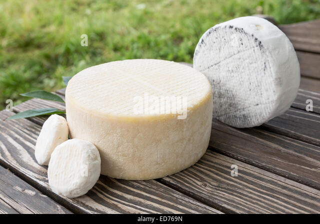 Goat on table stock photos goat on table stock images for Table 52 goat cheese biscuits