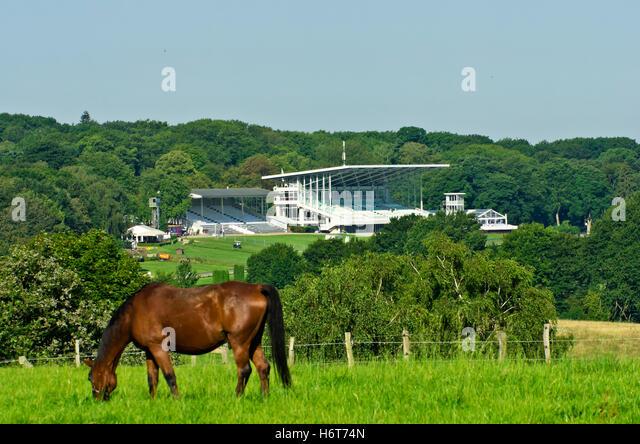 dusseldorf horse racing