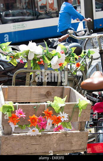 brightly colored flowers on bicycles in central amsterdam city stock image brightly colored offices central st