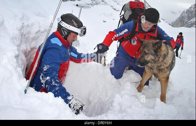 Crowsnest Pass Dog Rescue