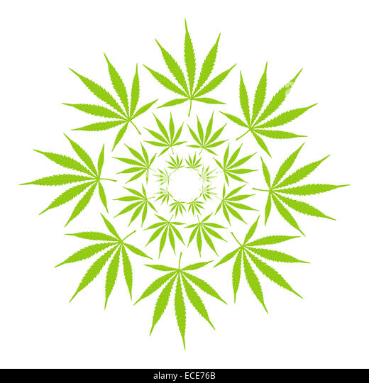 cannabis leaf circle stock image