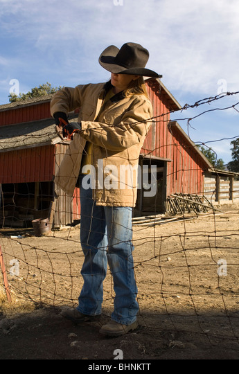 Mending Fence Stock Photos Amp Mending Fence Stock Images