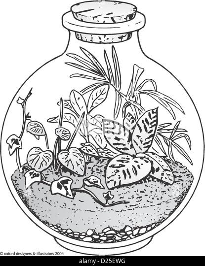 Vase And Snake