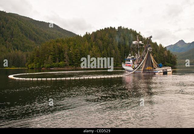 Purse seine stock photos purse seine stock images alamy for Purse seine fishing