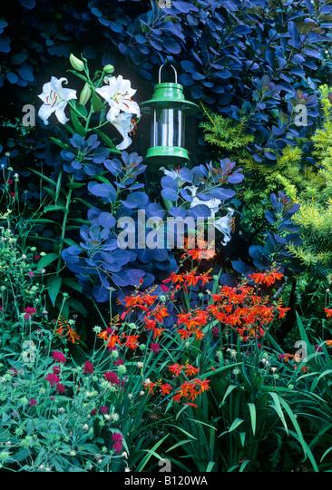 Gardenscape   Stock Image