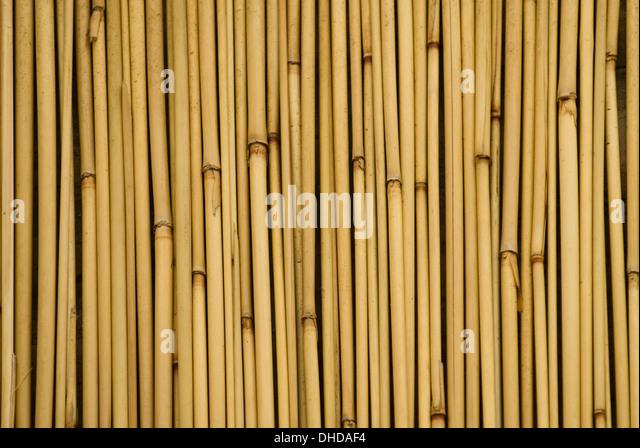 Bamboo Stcik People ~ Bamboo sticks stock photos images