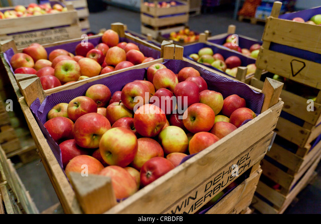 cases of fruit wholesale in central pa