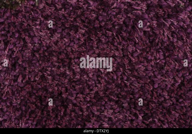Purple Carpet Texture