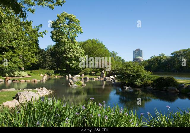 ILLINOIS Chicago Osaka Japanese Garden in Jackson Park iris along ...