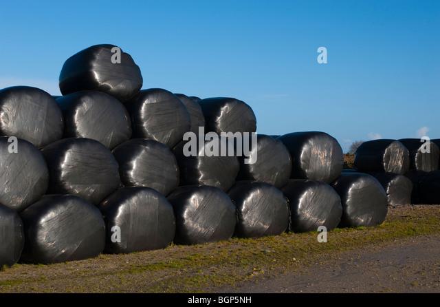 Polythene Stock Photos Amp Polythene Stock Images Alamy
