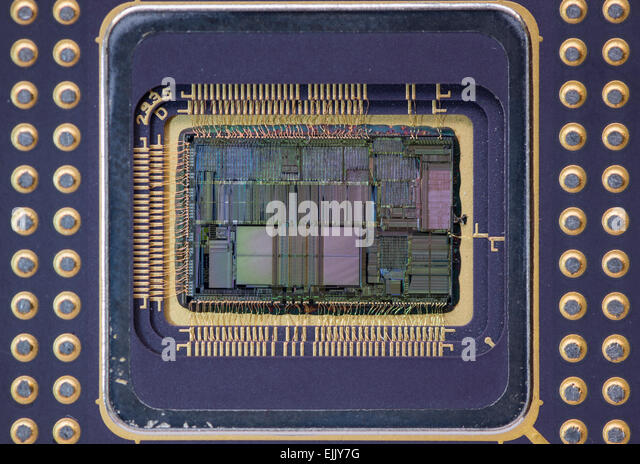 microprocessors for personal computers Types of computers : links to topics on this page: microcomputers a microcomputer is a computer that has a microprocessor chip (or multiple microprocessors) as its cpu personal computers come in two major varieties.