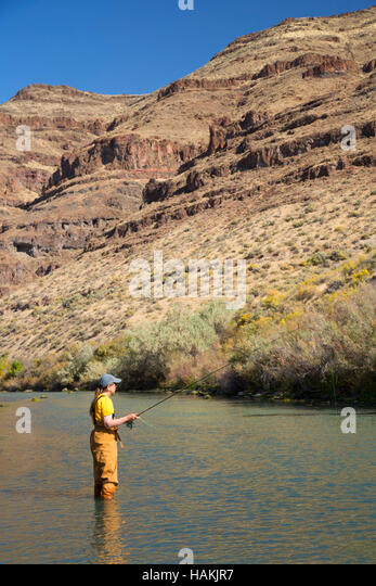 Woman wading in river stock photos woman wading in river for Owyhee river fly fishing