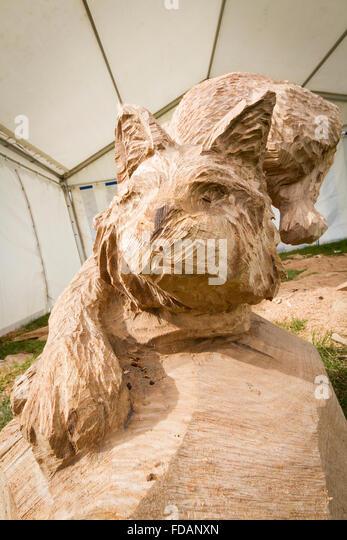 Cheshire cat stock photos images alamy