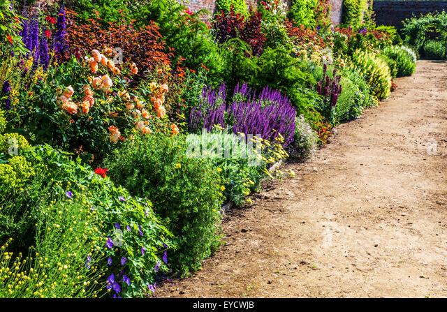 Perennials bed summer stock photos perennials bed summer for 7194 garden pond