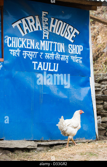 Chicken shack stock photos chicken shack stock images for Annapurna cuisine los angeles
