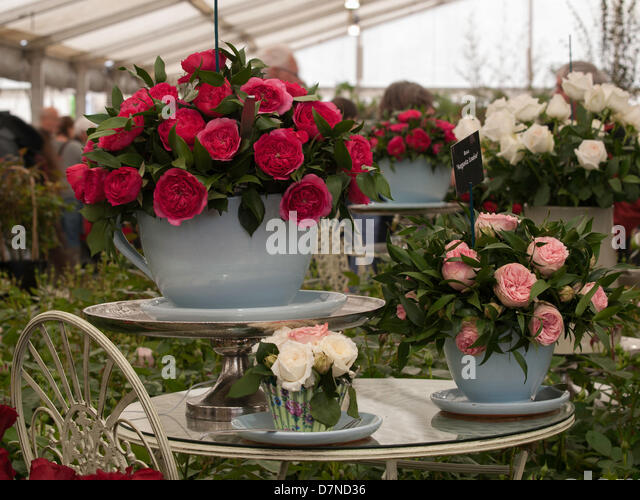 Giant Tea Cup Stock Photos Giant Tea Cup Stock Images Alamy