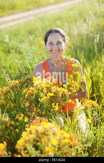Mature Woman Gathers Herbs Wild Stock Photos & Mature Woman ...