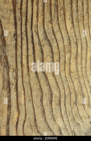 texture of fir plank, wooden pattern for your design - Stock Image