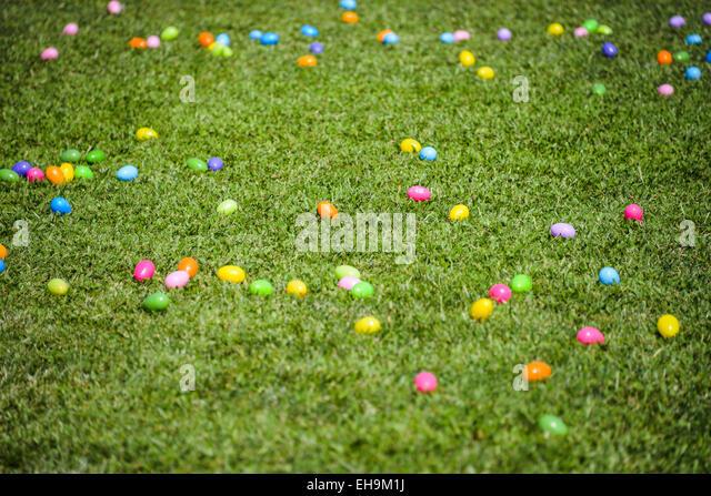 Multiple Colors Plastic Eggs Grass Easter Egg Rush Green Background