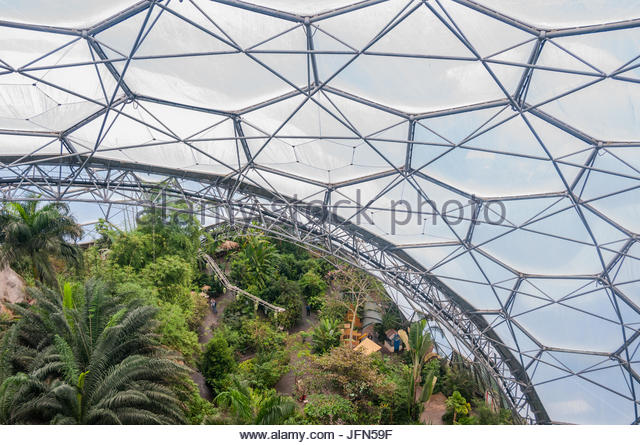View from the Rainforest Canopy Walkway at the Rainforet Biome in the Eden Project Cornwall & Rainforest Canopy Walkway Stock Photos u0026 Rainforest Canopy Walkway ...