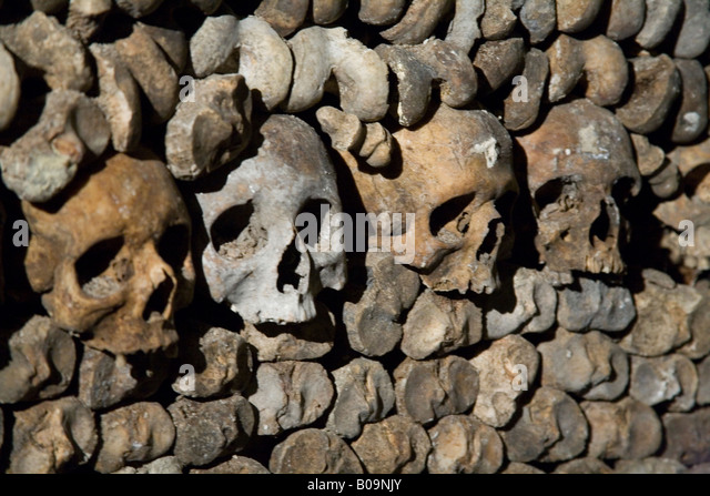 Human Skulls Bones Stacked In Stock Photos & Human Skulls ...