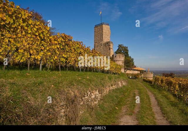 Wachenheim Stock Photos & Wachenheim Stock Images - Alamy