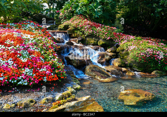 beautiful colorful garden with waterfall on a tropical island stock image - Beautiful Flower Gardens Waterfalls