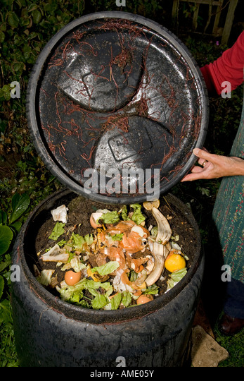 black compost bin with active worm population cotswolds uk stock image