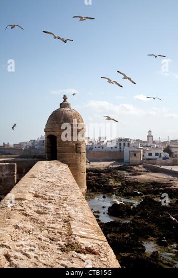 the ramparts of essaouira - photo #34