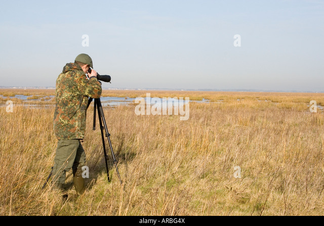 Marshside Stock Photos Amp Marshside Stock Images Alamy