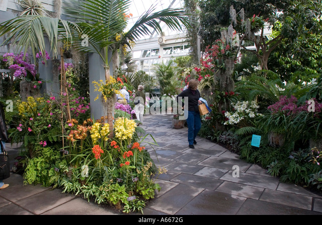 Orchid Show In Enid Haupt Stock Photos Orchid Show In