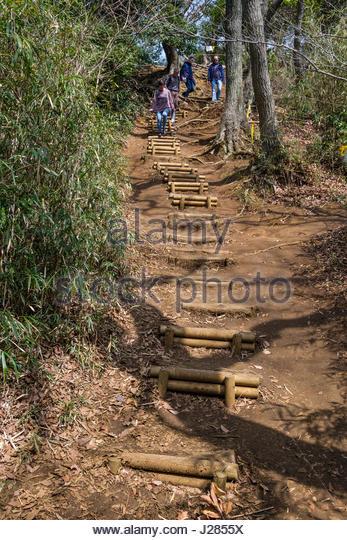 People Hiking On Rugged Trail Of The Kuzuharaoka Daibutsu Hiking Course,  Kamakura, Kanagawa