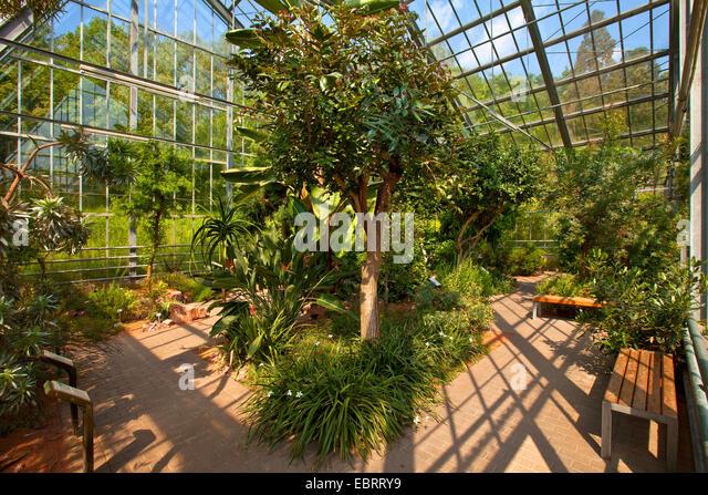 Indoor gardens stock photos indoor gardens stock images for Indoor botanical gardens
