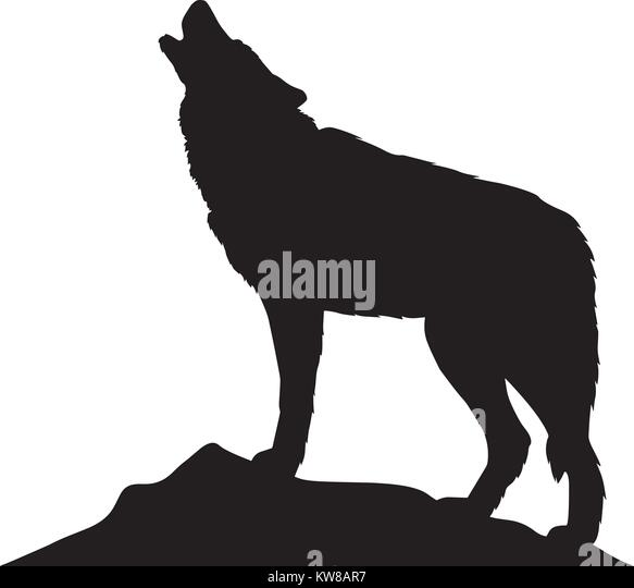 wolf silhouette vector illustration stock image
